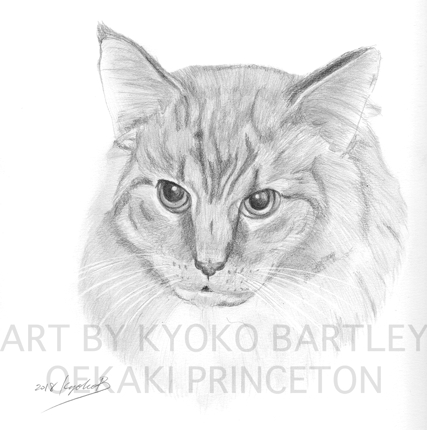 写真から精密描写イラスト!大事なペットやお気に入りの動物をお描きします(小)