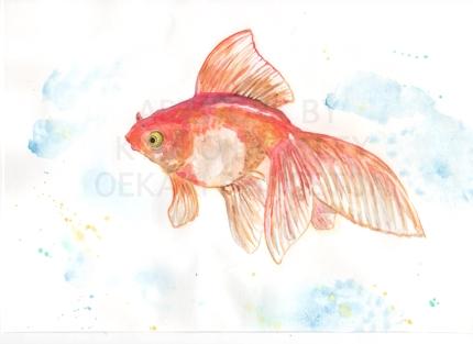 写真から水彩画イラスト!花や動物、静物をお描きします(小)