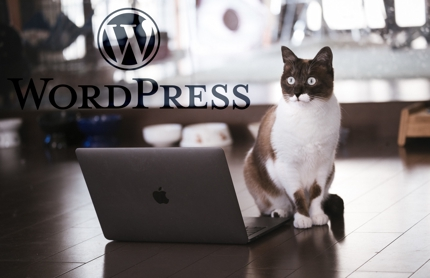 WordPressの管理画面カスタマイズをもう一度