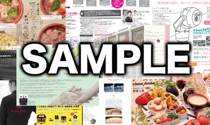 修正無制限!カタログ・パンフレットデザイン〜A3(A4-4ページ)データ入稿まで