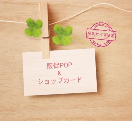 販促POP&ショップカードセット
