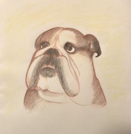 大好きなペットの似顔絵描きます
