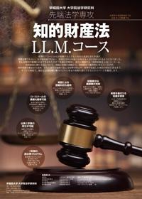 早稲田大学法学部フライヤー