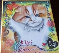 ペット、ワンちゃん、猫ちゃんの冠婚葬祭