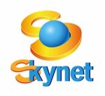 sgysxさんの「Skynet」のロゴ作成への提案