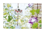 renoyura39さんの【複数採用】「ひまわり/花火と浴衣/夏の縁側風景」のいずれかをテーマにしたポストカードのデザイン依頼への提案