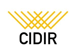 to-noさんの東京大学の防災情報に関する研究組織である「総合防災情報研究センター(CIDIR)」のロゴへの提案