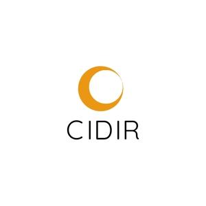 athenaabyzさんの東京大学の防災情報に関する研究組織である「総合防災情報研究センター(CIDIR)」のロゴへの提案