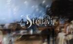 fineheartsさんの女性向け美容サロン「stellavie」のロゴへの提案