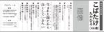 kou1113さんの県議会議員選挙広報への提案