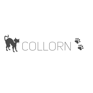 akiyam-0101さんの個人で運営するウェブメディア「collorn」のロゴ への提案