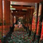 yumiko_richeirohaさんの写真を編集して、より魅力的な「プロフィール写真」を作成しよう!~ #はじめてのアドビ ~への提案
