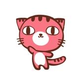赤い猫への提案