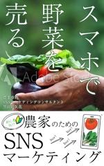 hinatafukaさんの電子書籍の表紙のデザインへの提案