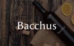 msyieaさんの「Bacchus株式会社」のロゴデザインをお願いします。への提案