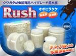 takamatsuさんの商品のメインに使う画像のインパクトある装飾加工への提案