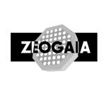 tobosukeさんの「ZEOGAIA」のロゴ作成への提案