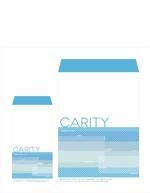 ezimaさんの急成長企業のCIに関わる封筒デザインへの提案