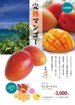 aritaさんの石垣島産完熟マンゴーを紹介するポスター制作への提案