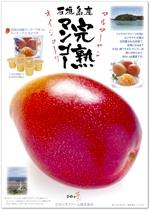 cosmosfactoryさんの石垣島産完熟マンゴーを紹介するポスター制作への提案