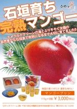 m_matsumotoさんの石垣島産完熟マンゴーを紹介するポスター制作への提案