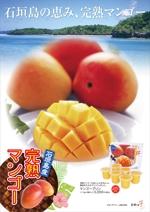 NYDesignさんの石垣島産完熟マンゴーを紹介するポスター制作への提案