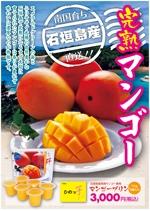 Kickintoshさんの石垣島産完熟マンゴーを紹介するポスター制作への提案