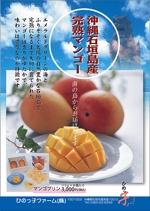 aoieagr-ikさんの石垣島産完熟マンゴーを紹介するポスター制作への提案