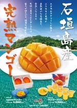 d_b_rさんの石垣島産完熟マンゴーを紹介するポスター制作への提案
