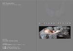 yuyupichiさんの高級シープスキンのカタログ制作への提案