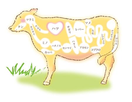 牛 部位 イラスト