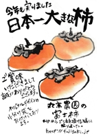 bokuzenさんの手書きチラシ・絵手紙風DMチラシへの提案