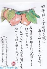 ezzzzzさんの手書きチラシ・絵手紙風DMチラシへの提案