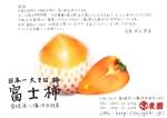 taruho0828さんの手書きチラシ・絵手紙風DMチラシへの提案