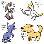 tomatokageさんの春日丘動物病院(犬、猫、うさぎ、小鳥)のキャラクターデザインへの提案