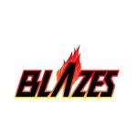 paperfishさんのCLUBや飲食の事業を展開する「株式会社BLAZES」のロゴへの提案