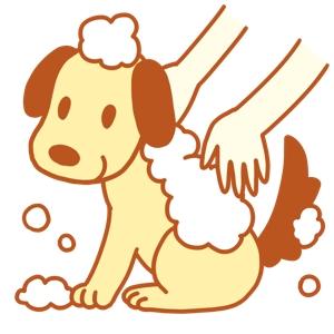 sakuchiyo_xxxさんのペット(犬)をシャンプーしているイラスト作成への提案