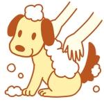 ペット(犬)をシャンプーしているイラスト作成への提案