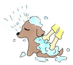 himawari_714さんのペット(犬)をシャンプーしているイラスト作成への提案