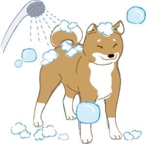 ruminantさんのペット(犬)をシャンプーしているイラスト作成への提案