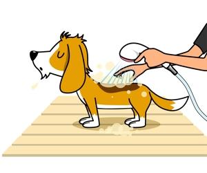 nam_350さんのペット(犬)をシャンプーしているイラスト作成への提案