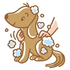 fisco2さんのペット(犬)をシャンプーしているイラスト作成への提案