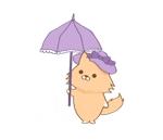 AOJAPさんのふわふわ長毛の猫の2頭身キャラクターデザインをお願いいたしますへの提案