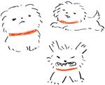 犬のゆるいイラストを描ける方(名刺デザイン)への提案