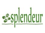 haraho3000さんの生活雑貨ブランド「スプランドゥール」のロゴへの提案