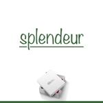 le_cheetahさんの生活雑貨ブランド「スプランドゥール」のロゴへの提案