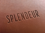 anpan_1221さんの生活雑貨ブランド「スプランドゥール」のロゴへの提案