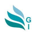 GI Software Joint Stock Company