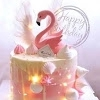 Pink Flamingo.sw