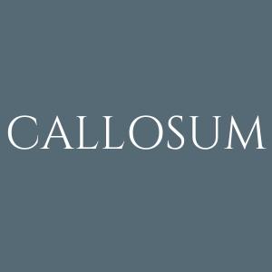 株式会社CALLOSUM